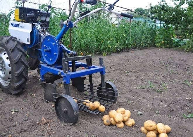 Мотоблок Нева с картофелекопалкой