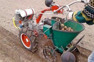 Посадка картофеля картофелесажалкой для мотоблока: с двухрядным окучником, видео, как отрегулировать