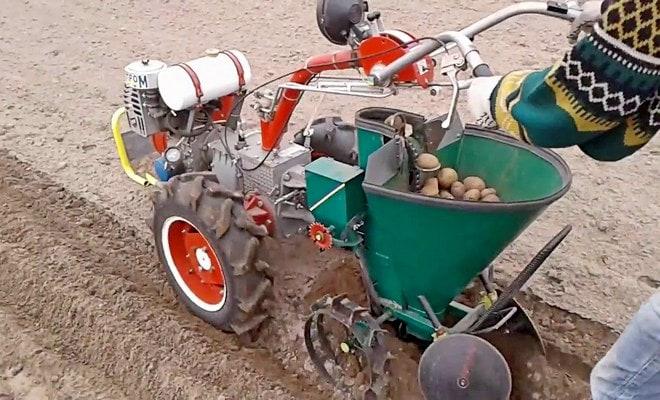 Садим картошку