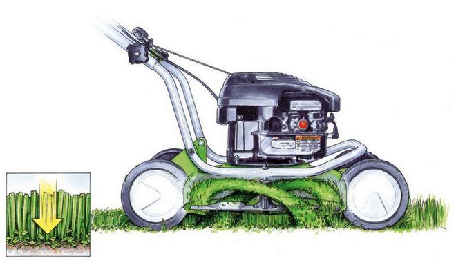 Мульчирование травы