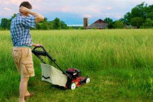 Как выбрать хорошую косилку для высокой травы и неровных участков с дикой растительностью