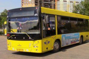 Характеристики и устройство автобуса полунизкопольного типа МАЗ-206
