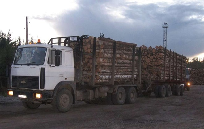Машина для перевозки лесов