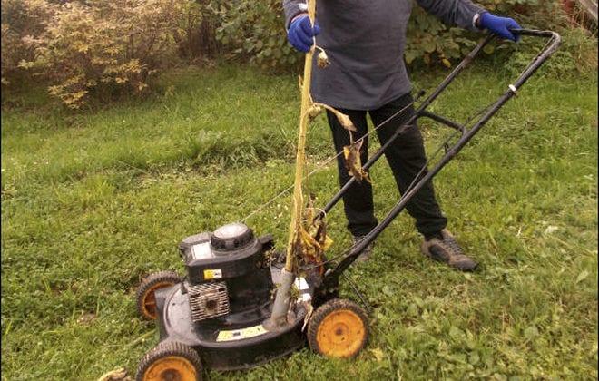 Модернизация газонокосилки