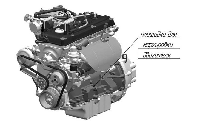Расположение номера мотора