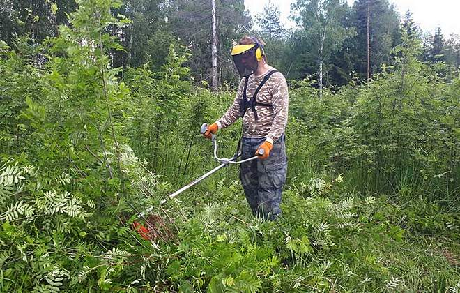 Скашивание травы мотокосой