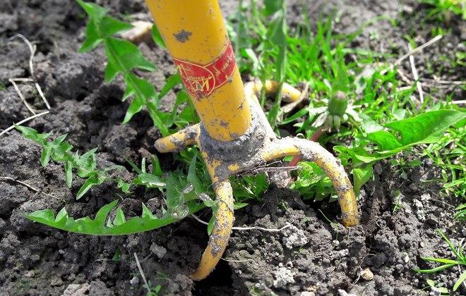 Извлечение травы с корнями