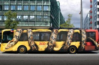 Какие автобусы можно брендировать